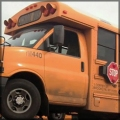 school-bus_bug