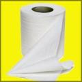 toilet paper_bug